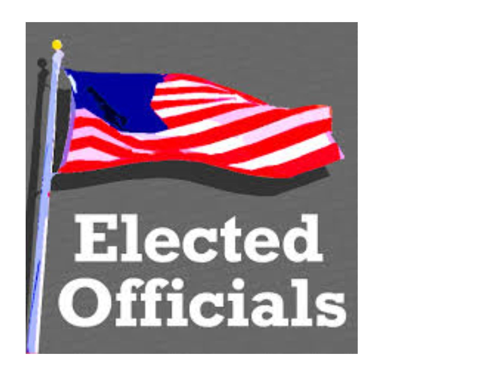 Elected Official graphic